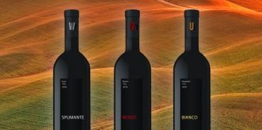 Come leggere l'etichetta del vino [Guida] - Cibecco.com