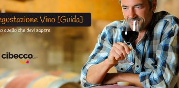 Degustazione Vino [Guida] Tutto quello che devi sapere
