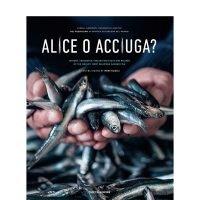 Alice o Acciuga? di Irene Rizzoli