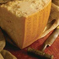 Parmigiano Reggiano DOP 57 mesi 5 x 1Kg - Caseificio Boselli