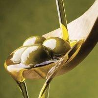 Olio Extravergine di Oliva - Acquista Direttamente dal Produttore