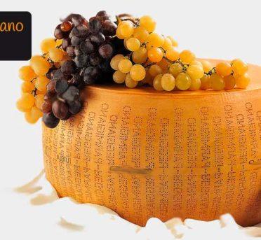 Il Parmigiano Reggiano DOP, il re dei formaggi. Produzione, territorio, lavorazione, stagionatura, bollini, varietà